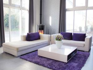 exemple deco salon gris blanc violet