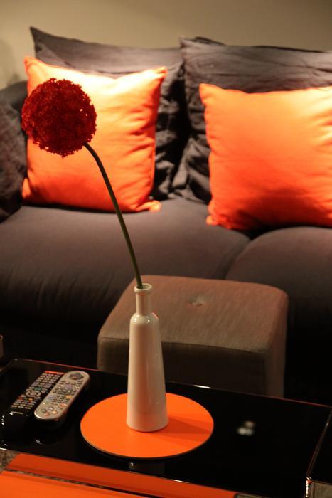 aménagement deco salon marron et orange - Photo Déco