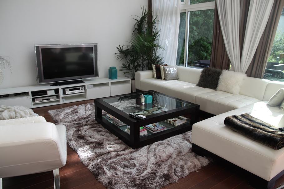 Deco salon noir et blanc turquoise - Idee deco noir et blanc salon ...