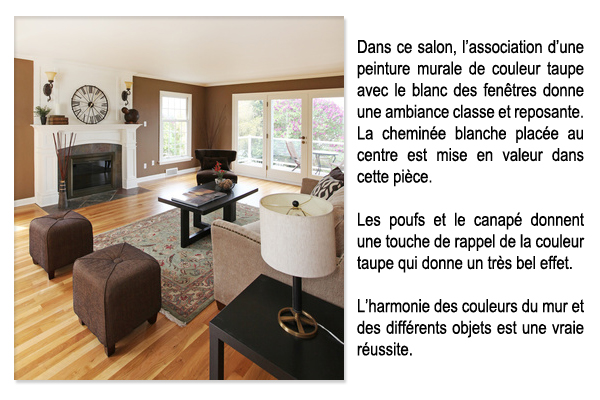 Deco salon taupe blanc noir for Salon gris taupe et blanc