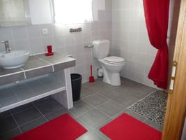 organisation déco salle de bain rouge et gris