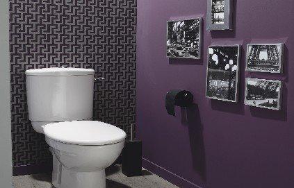 Jolie décoration wc chic
