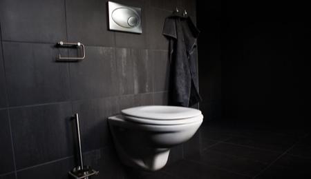 Deco pour wc suspendu - Exemple deco wc ...