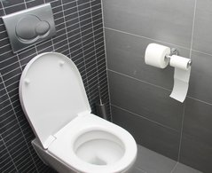 Idee Deco Wc Carrelage decoration wc original. beautiful toilet decoration idea metal tray