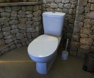 deco wc papier peint