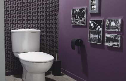 decoration des wc des toilettes originales. Black Bedroom Furniture Sets. Home Design Ideas