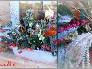 D co jardiniere de noel for Composition jardiniere exterieure