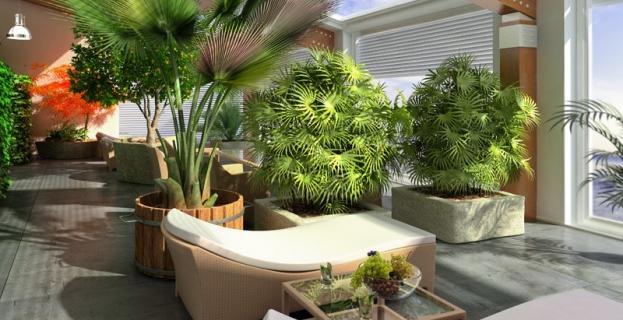 D co v randa zen for Deco terrasse zen