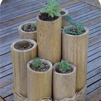 Jolie idee déco jardin bambou - Photo Déco
