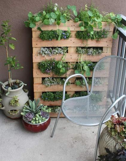 Idee d co jardin exterieur pas cher for Idee jardin exterieur