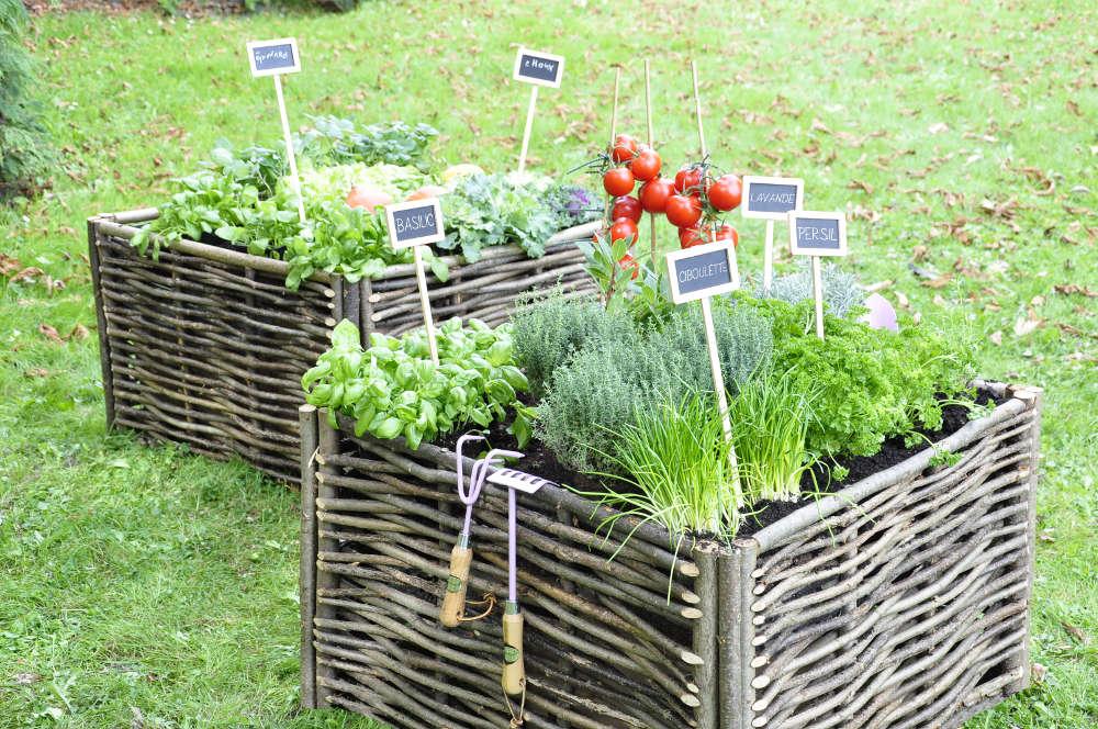 idee déco jardin potager