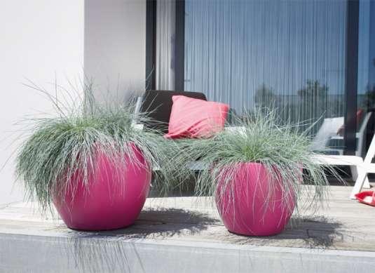 Jardinage d coration jardin for Jardinage decoration jardin