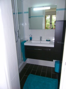 modèle déco salle de bain turquoise et chocolat