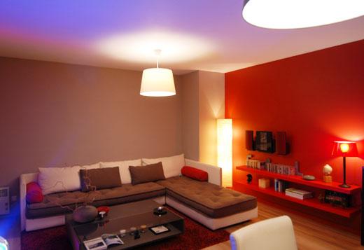 d233coration salon rouge et brun