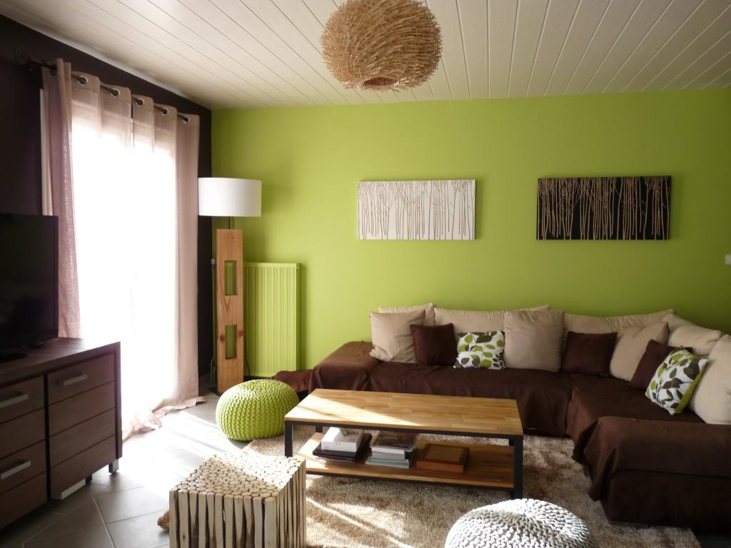 d233coration salon vert anis