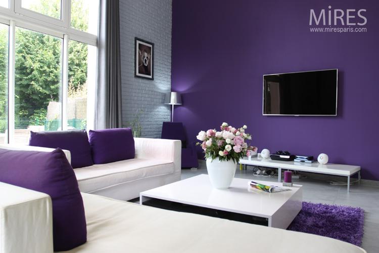 Mur Violet Et Gris