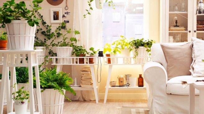 d co jardin appartement. Black Bedroom Furniture Sets. Home Design Ideas