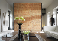 d co salon loft americain. Black Bedroom Furniture Sets. Home Design Ideas