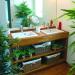 décoration salle de bain exotique