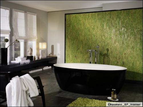 D coration salle de bain tendance 2012 for Nouvelles tendances salle de bain