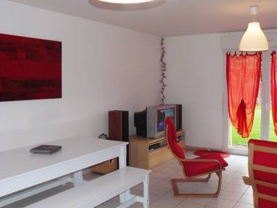 Jolie décoration salon rouge et gris