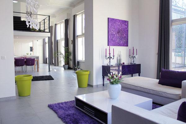 photo decoration d coration salon violet. Black Bedroom Furniture Sets. Home Design Ideas
