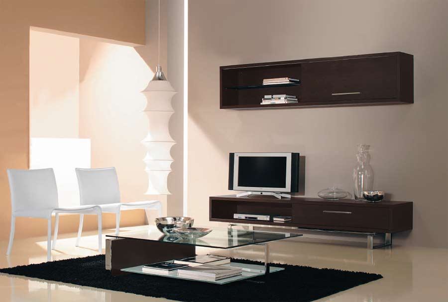 decoration salon avec meuble wenge. Black Bedroom Furniture Sets. Home Design Ideas