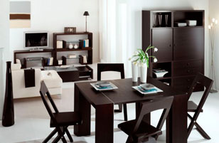 Decoration salon avec meuble wenge for Meuble de decoration de salon