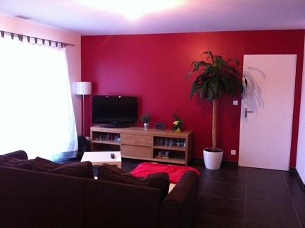 Decoration salon framboise for Chambre couleur framboise et gris