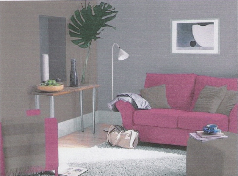 decoration salon fushia et gris. Black Bedroom Furniture Sets. Home Design Ideas