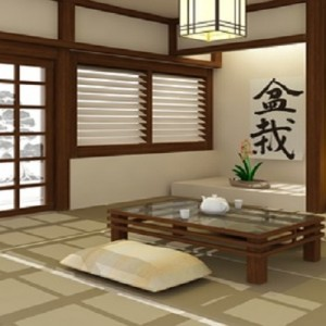 decoration salon japonais. Black Bedroom Furniture Sets. Home Design Ideas
