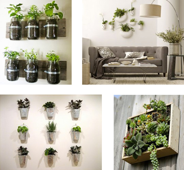 D co jardin appartement for Idee deco avec des photos