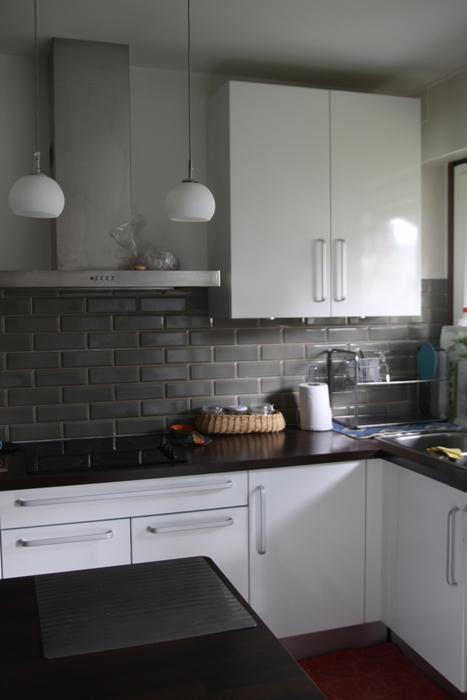 Cuisine Rouge Ou Grise : modèle déco cuisine appartement
