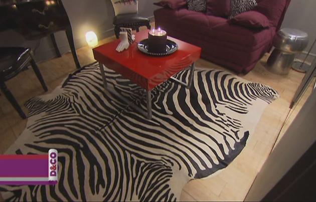 Deco Chambre Hippie : modèle déco maison zebre