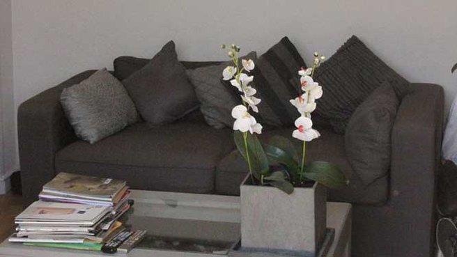 deco salon canape gris. Black Bedroom Furniture Sets. Home Design Ideas
