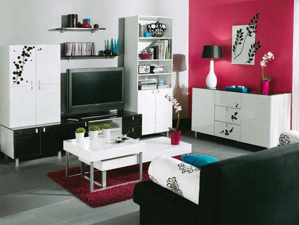 Modle Deco Salon Petit Espace