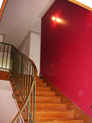 Photo decoration decoration escalier peinture for Photo peinture escalier