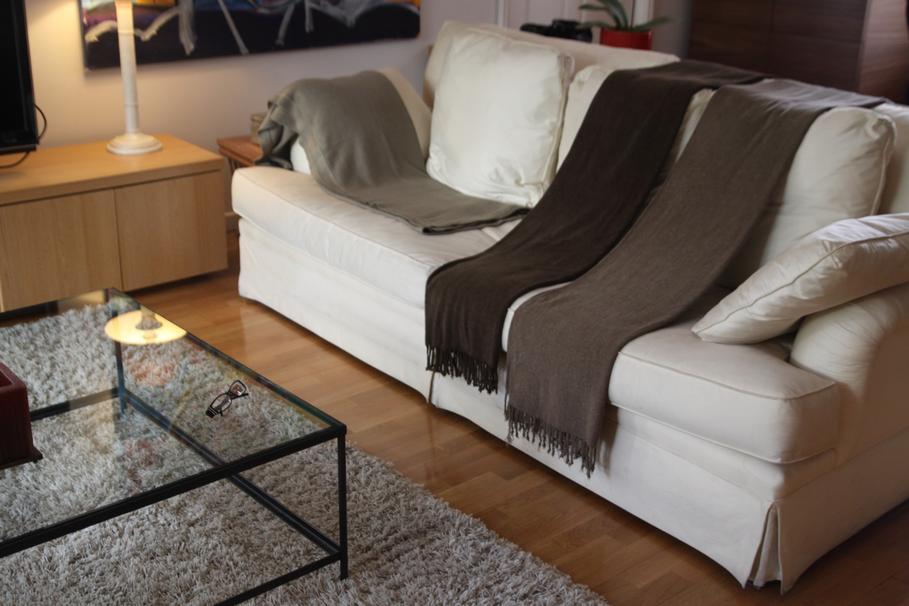 decoration salon avec canape blanc. Black Bedroom Furniture Sets. Home Design Ideas