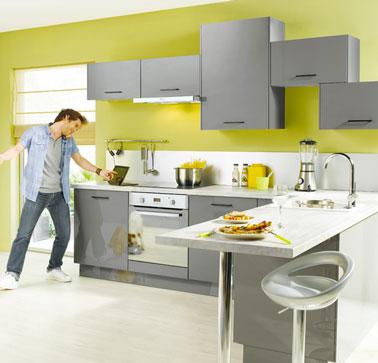 Deco cuisine vert et gris for Cuisine gris et vert