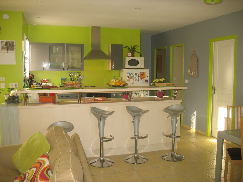 Deco salon vert anis et gris for Salon de jardin vert anis