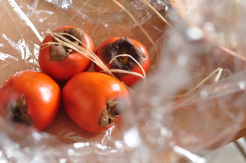 Cuisine rouge et kaki for Deco cuisine kaki