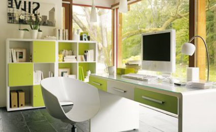 D co int rieure bureau for Belle decoration d interieur