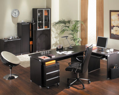 d coration dun bureau professionnel. Black Bedroom Furniture Sets. Home Design Ideas