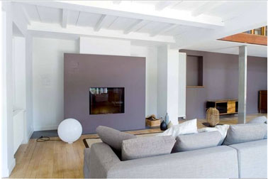Photo decoration decoration cheminee peinture - Decoration interieur peinture salon ...