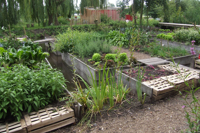 D co jardin potager for Exemple de deco jardin