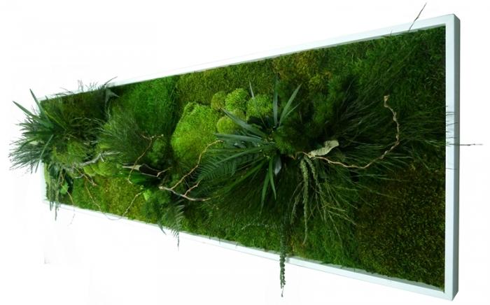 déco murale vegetale