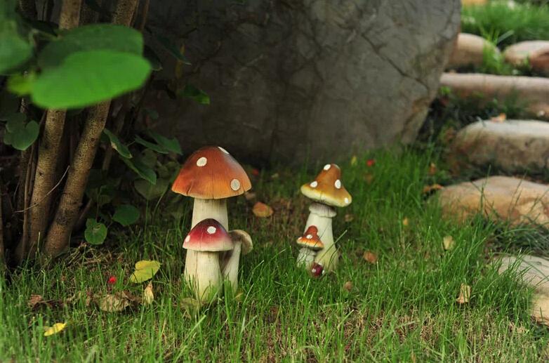 modèle déco jardin champignon