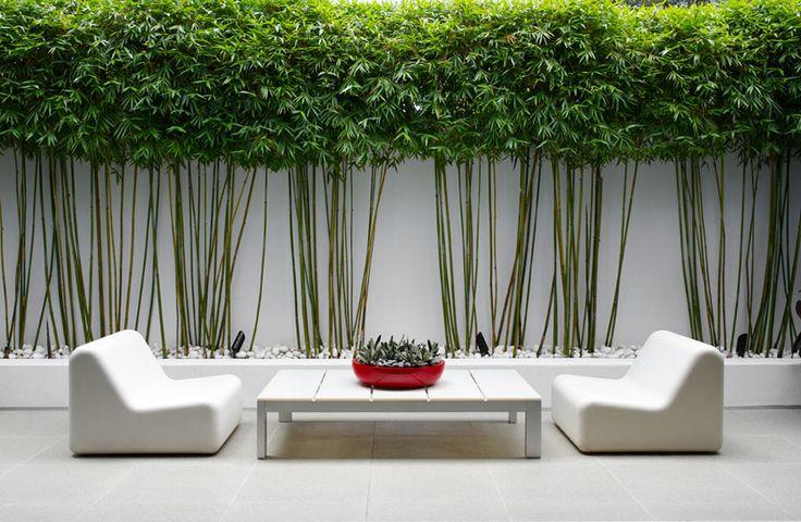 déco balcon bambou