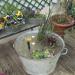 déco jardin fontaine