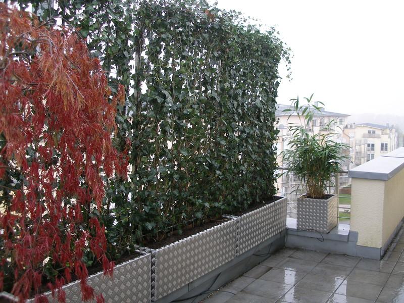 D coration balcon plantes for Amenagement terrasse plantes